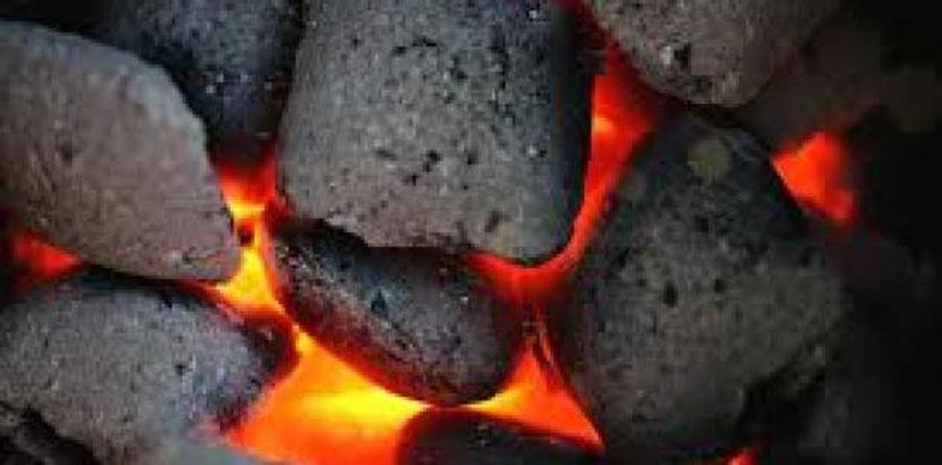 الفحم النباتي والفحم الحجري
