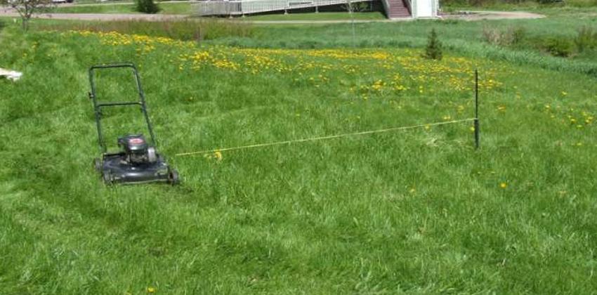 إعادة استخدام قصاصات العشب